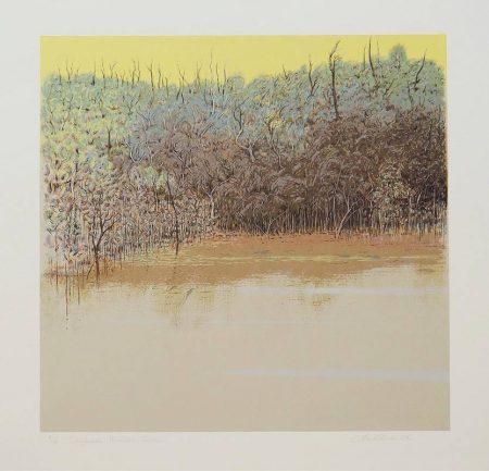 Clem Millward  - Daybreak, Mullet Creek