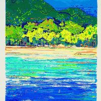 Greg Mallyon  - Daintree Coastline