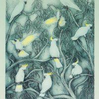 Joseph Austin - Sulphur Crested Cockatoo
