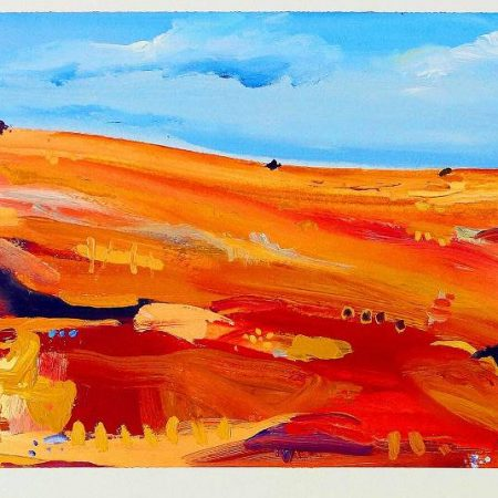 Julie Donald - Bare Hill Near Adelaide