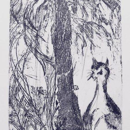 June Hajncl - Sunce the Cat