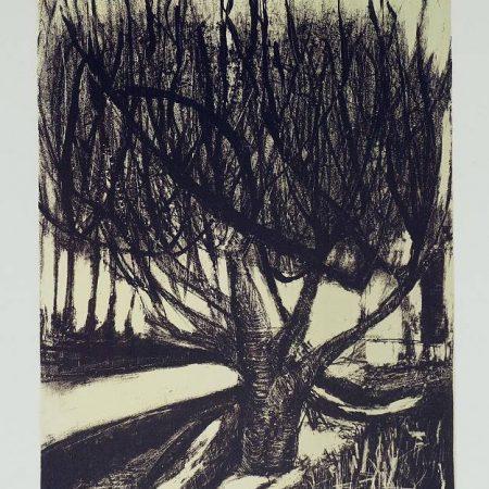 Kareen Anchen - winterlight 2