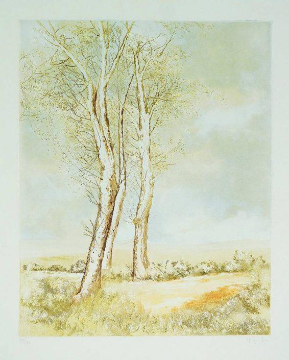 U.A - Trees