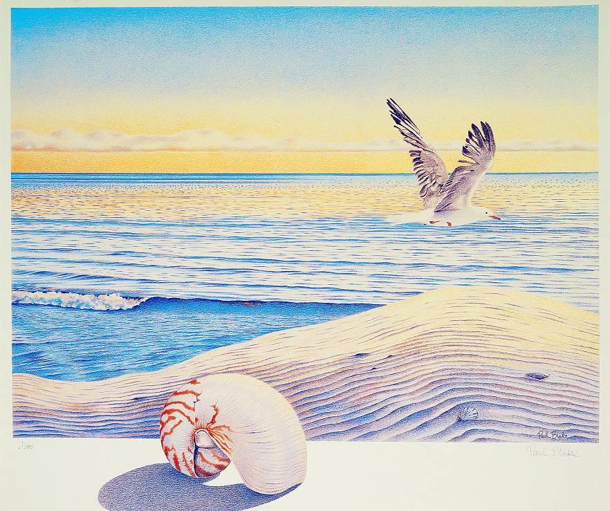 Paul Blake  - Nautilus & Tern