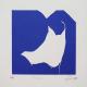 Ponder (Blue)