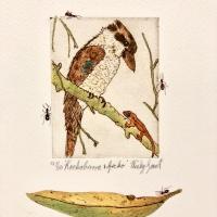 Kookaburra and Gecko
